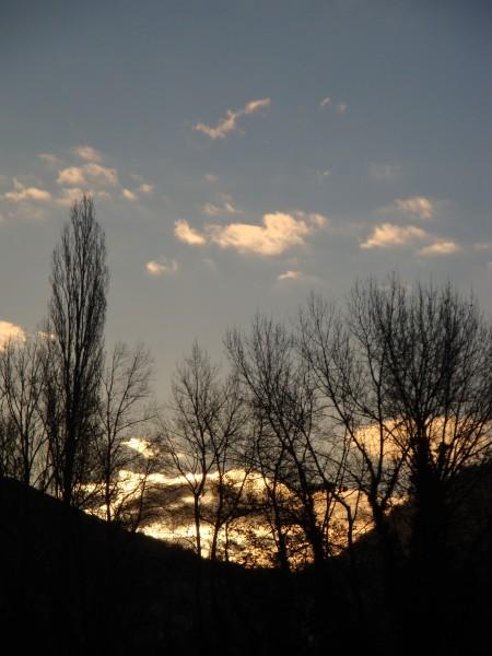 à l'est s'inventent des incendies - soleil se levant derrière des arbres sans feuilles