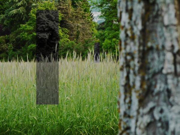 Au premier plan à droite, un tronc d'arbre flou, au deuxième plan un champ de blé, au 3e plan des arbres et au loin des traces de falaises. Et des rectangles gris, donnant l'impression d'une perspective tracée.