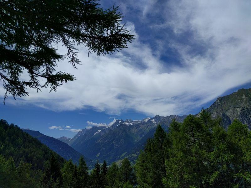 Val Ferret avec au premier plan des Mélèzes
