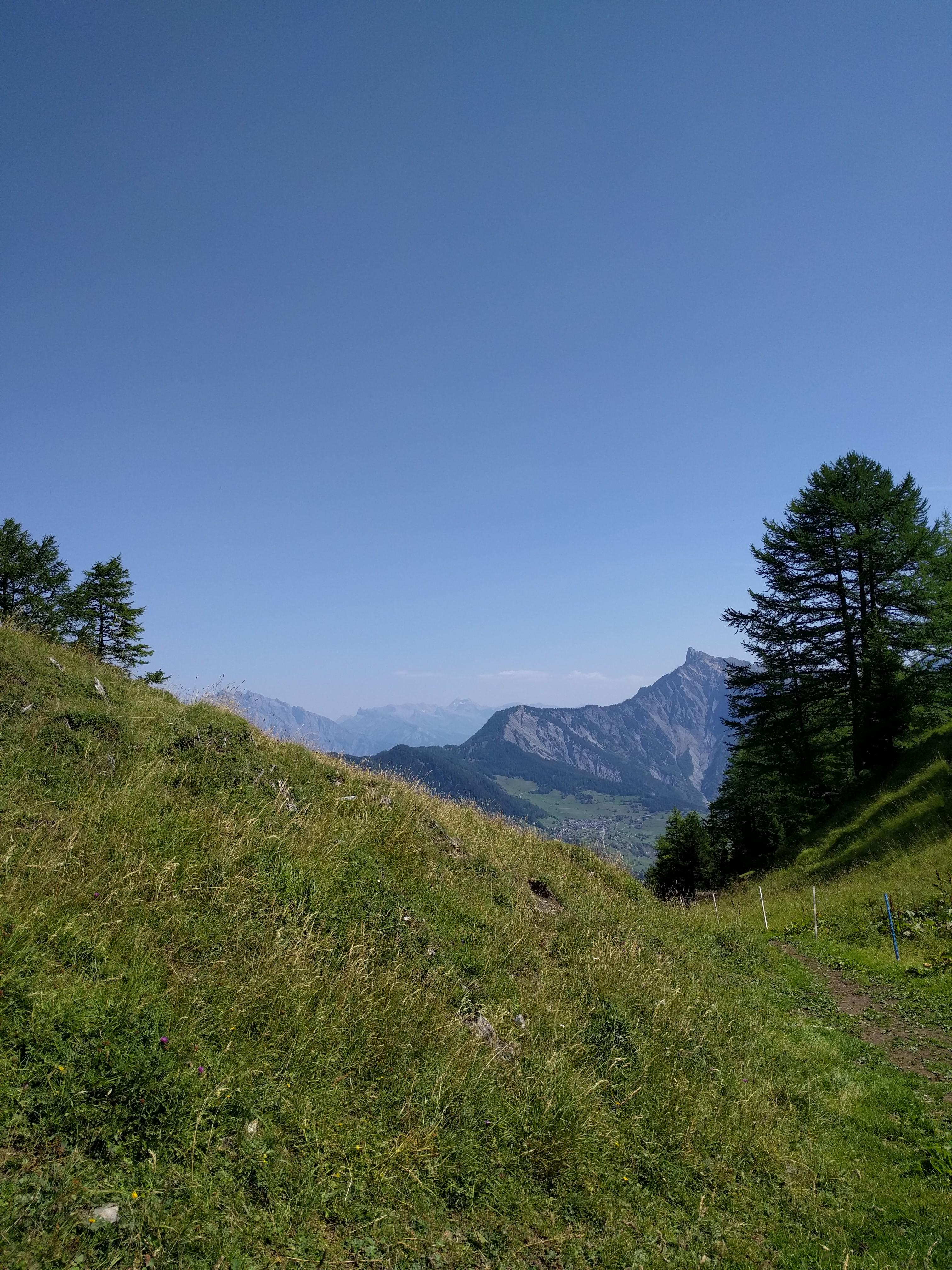 Prairie dans un petit val, au-dessus de l'alpage de Catogne, avec vue sur la Pierre-à-voir