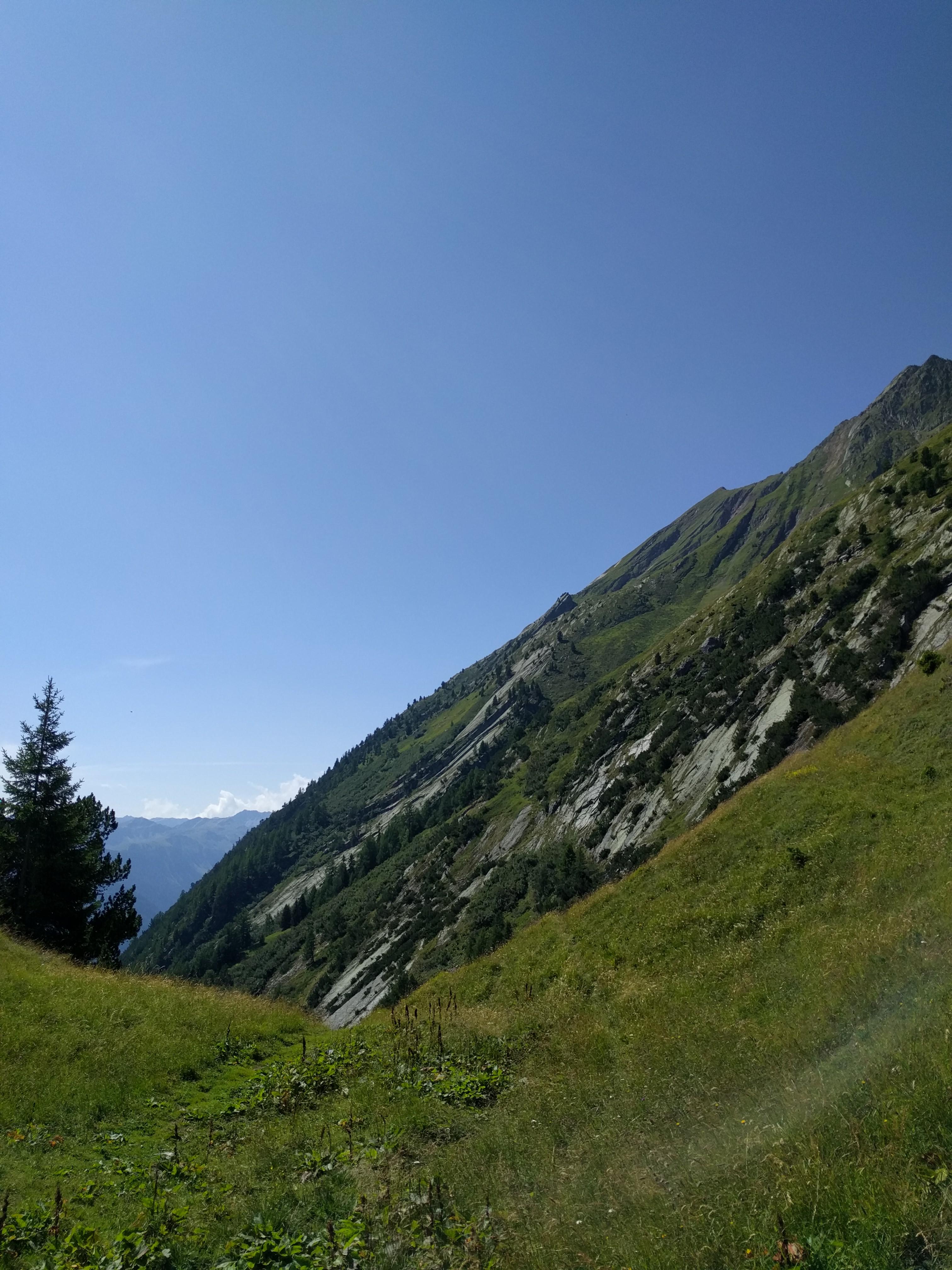 Prairie dans un petit val, au-dessus de l'alpage de Catogne, avec vue sur le Catogne