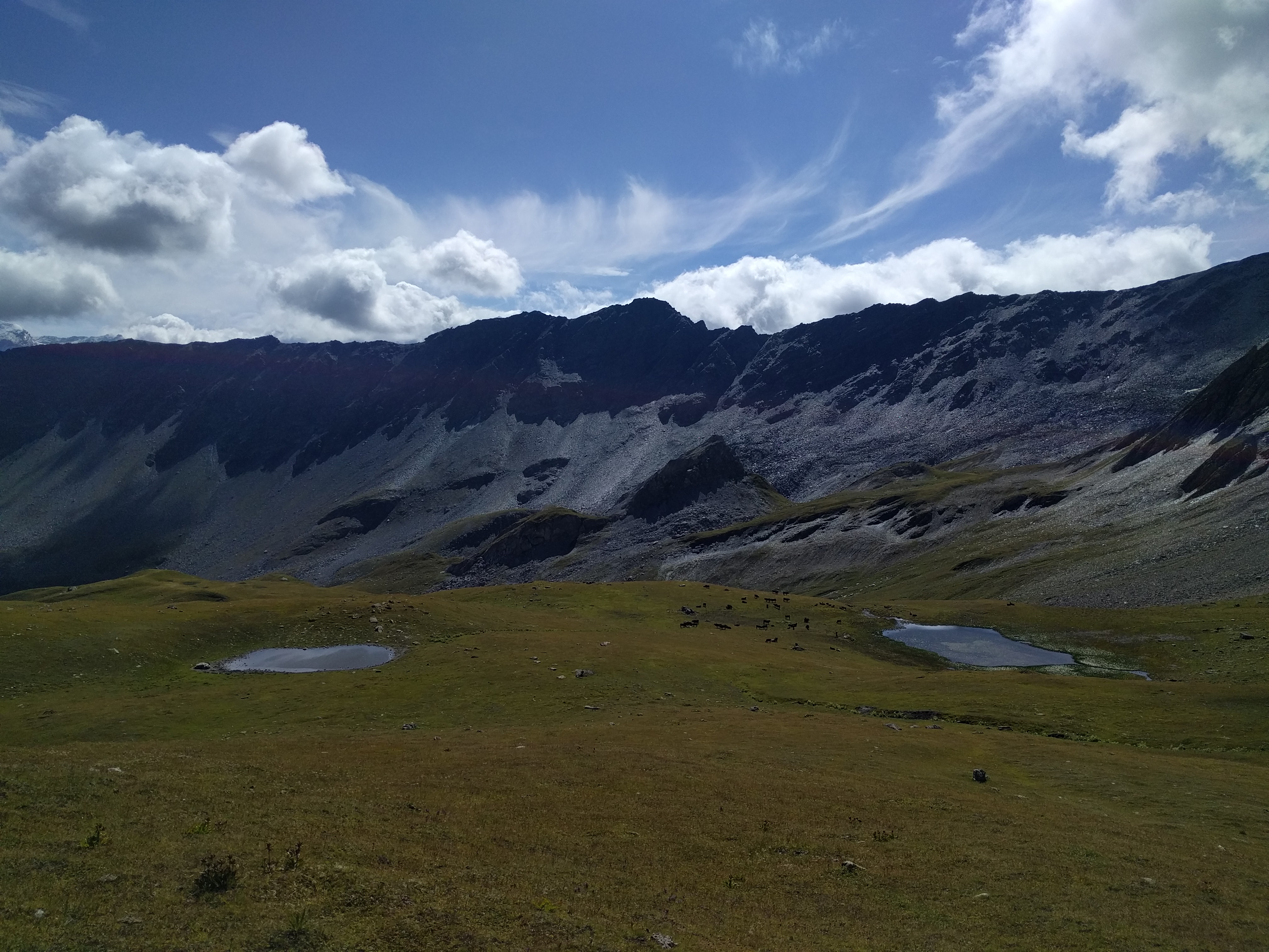 Fond de vallé, pâturage, vaches, gouilles et cirques de montagnes très caillouteuses