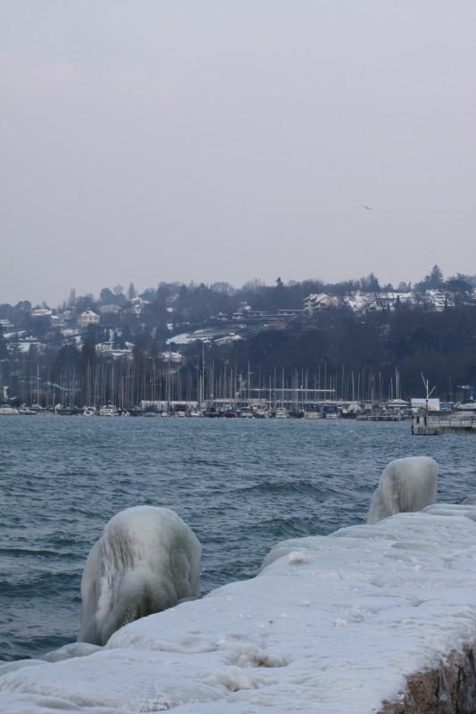 bord du lac Léman gelé, pillonnes et pierres gelées